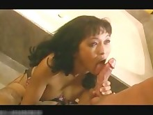 babe blowjob brunette bukkake bus busty fingering gang-bang hairy